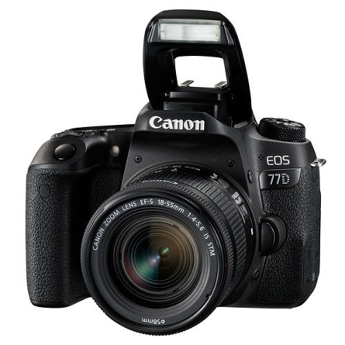 Фотоаппарат Canon EOS 77D Kit EF-S 18-55 IS STM